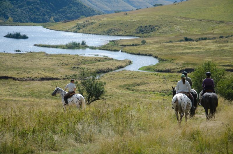 Add on a horse trail in the Game Reserve